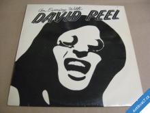 AN EVENING WITH DAVID PEEL 1975 GLOBUS 1990