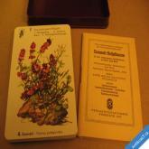 KARTY KVARTETO NĚMECKÉ LÉČIVÉ BYLINY 1957 32 karet