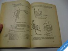 ZÁKLADNÍ ZDRAVOTNICKÁ PŘÍPRAVA  UČEBNICE ČK  1962