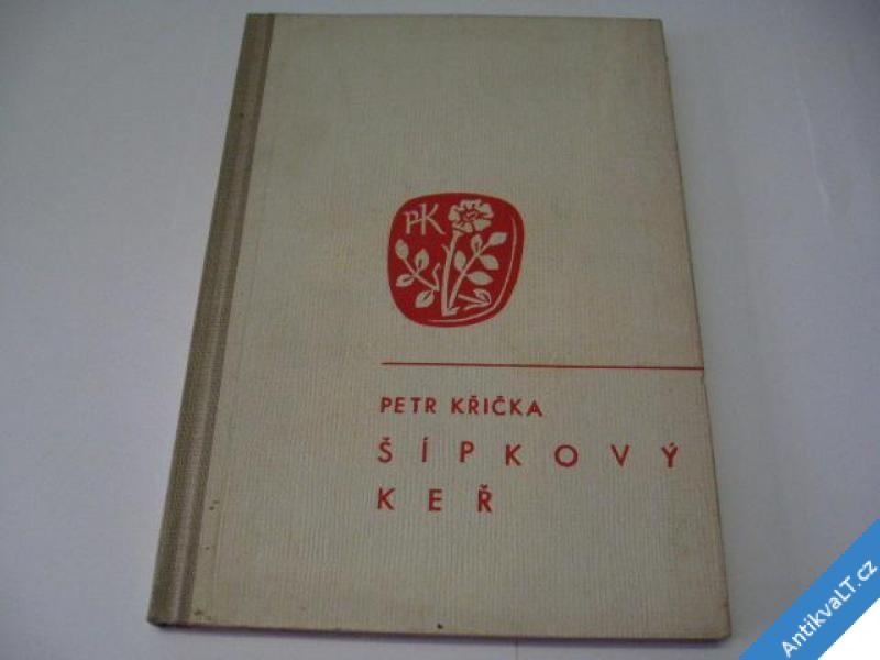 foto    ŠÍPKOVÝ KEŘ  1911-1913  KŘIČKA PETR  1948